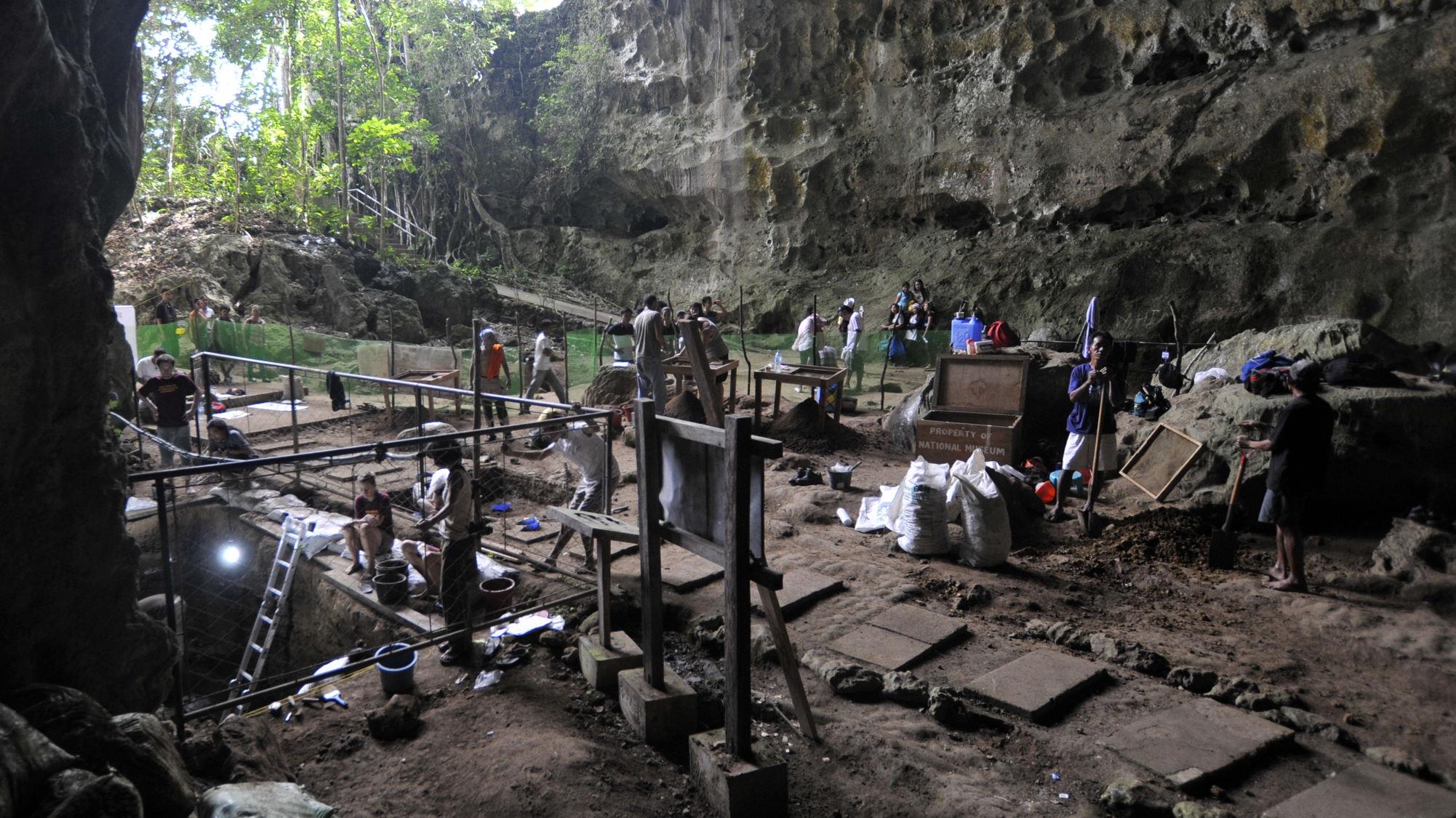 Entretien avec le paléothropologue Clément Zanolli sur la découverte d'une nouvelle espèce humaine